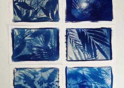 Moonlight Garden series, (10) 2016