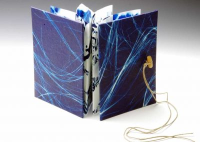 cyanotype cover, small accordian, 2014