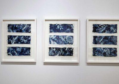 Forest Detritus: framed 60cm x 49cm